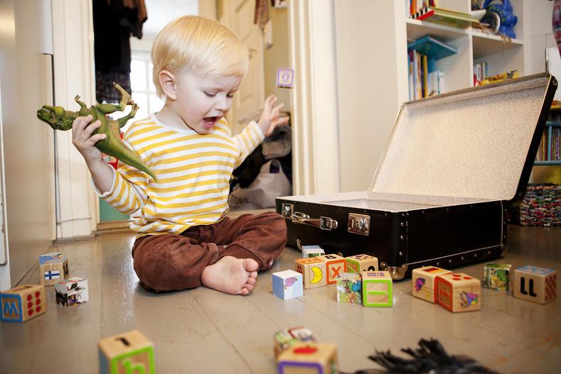 asetus lasten päivähoidosta